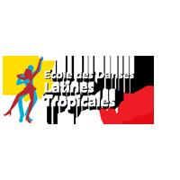 webmaster-freelance-salasa-danse